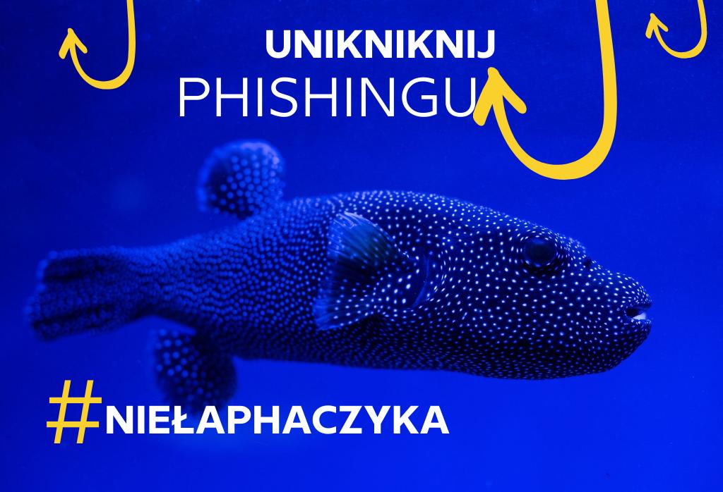 haczyk Agencja social media, fanpage i reklama na FB. Rzeszów - Emedialni.pl